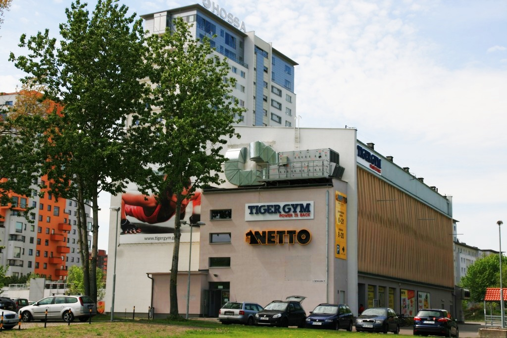 Tiger Gym w Gdańsku